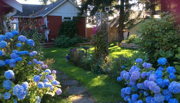 Bed And Breakfast West Coast Vancouver Island